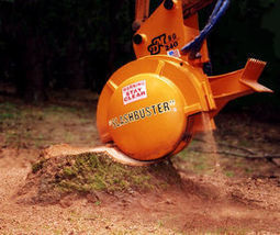 Meg's Guide to Gardening: Stump Removal with a Stump Grinder | Stump Grinding Guide in Dallas Ga | Scoop.it