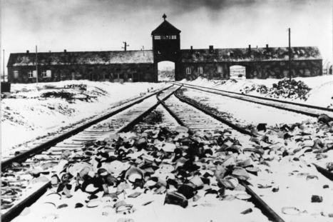 70 ans demain que nous aurons ouvert les portes et les yeux sur  l'impensable ignominie de l'être humain   Mon centenaire de la grande guerre   Scoop.it