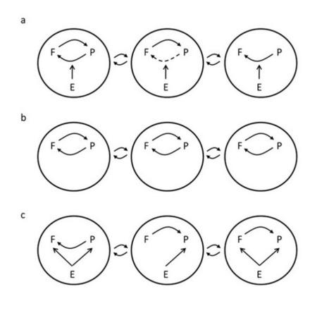 Geographic Mosaics of Coevolution   Origin of Life: Emergence, Self-organization and Evolution   Scoop.it