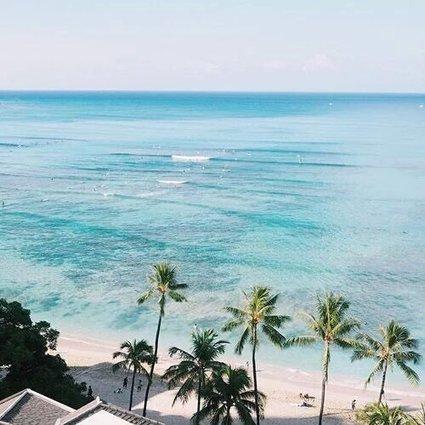 Tweet from @TheWorldStories   ❀ hawaiibuzz ❀   Scoop.it
