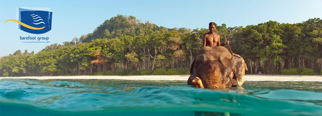 Hotels in Andamans, Accommodation in Andaman, Nicobar Islands - Barefoot Andaman | Beach resort  in andaman | Scoop.it