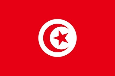 La révolution de Tunisie est une affaire d'âge | Brèves de scoop | Scoop.it