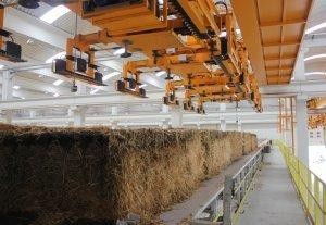 Pendientes del despegue de la biomasa - Hoy Digital | Biomasa y desarrollo económico | Scoop.it