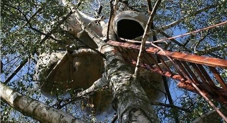 Casas de árbol urbanas, el sueño de Roel de Boer - VeoVerde | Infraestructura Sostenible | Scoop.it