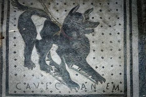 Pompeii guard dog mosaic back on show - BBC News   Ancient History   Scoop.it