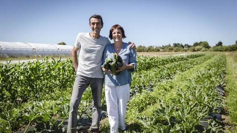 L'agriculture bio gagne du terrain presque partout en Europe | Entreprises de la filière bio | Scoop.it