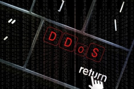 Only half of companies take DDoS seriously | News You Can Use - NO PINKSLIME | Scoop.it