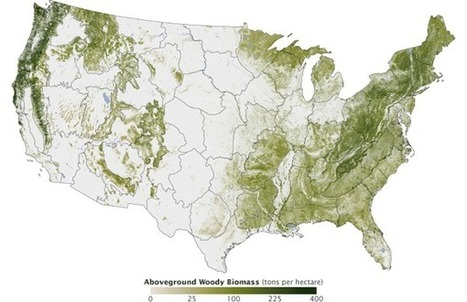 National Forest Map | Geography Education | Scoop.it