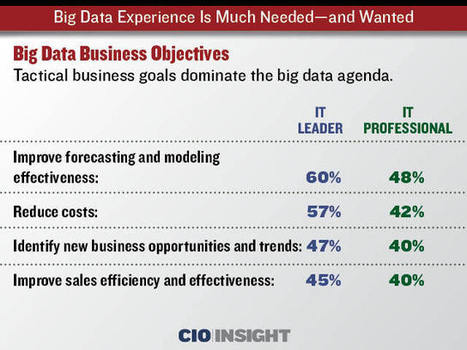 Big Data Experience Is Much Needed—and Wanted | Virtual Training & E-Learning in the Cloud! | Scoop.it