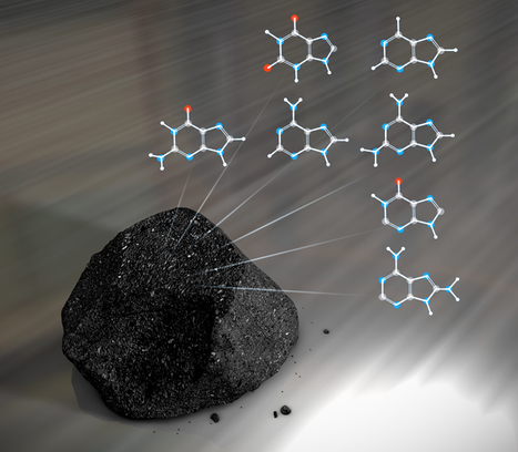 Proof the Universe is Fine-Tuned for Life? Scientists Find Antarctica Meteorites Contain Essential Building Block of DNA. | Planets, Stars, rockets and Space | Scoop.it