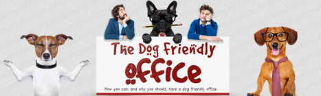 Making your Office Dog-Friendly - Euroffice Stationery Blog | Modern dog training methods and dog behavior | Scoop.it