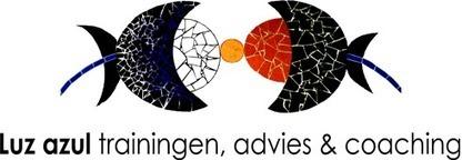 Sietar Europe webinars 'Tacit knowledge, culture and informal learning' - Luz Azul   SIETAR-France   Scoop.it