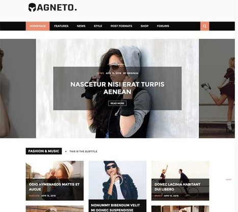 Magneto WordPress Theme | WordPress Themes 2017 | Best WordPress Themes 2017 | Scoop.it