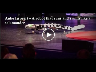 A Robot That Runs And Swims Like A Salamander #Biomimicry | Heron | Scoop.it