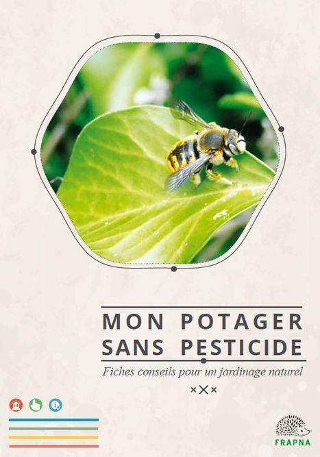 Mon potager sans pesticide, le guide ! - FRAPNA Zéro Pesticide | Insect Archive | Scoop.it