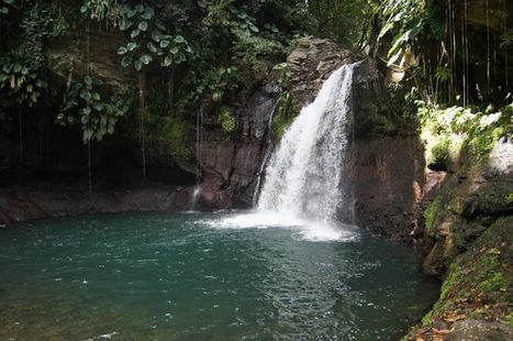 LES PETITS PARADIS DE MANON: Saut De La Lézarde, (Petit-Bourg, Guadeloupe) | Naviguer dans les caraïbes | Scoop.it