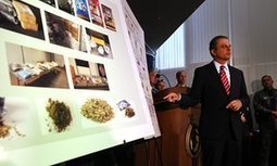 Spice: Americans turn to dangerous 'synthetic marijuana' to evade drug tests   Alcohol and other Drugs   Scoop.it