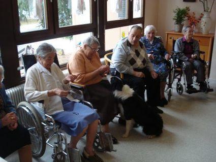 Mes chiens visiteurs au service des personnes agées à Mulhouse | La passion des animaux | Educateur canin en Alsace - Etoile des bergers | Scoop.it