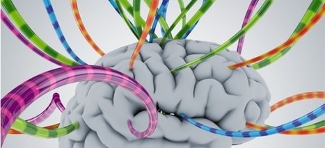 'Aprendizado on-line é mais natural para o cérebro' | Educação & ensino de línguas | Scoop.it
