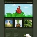 73 Bancos o Webs de fotos gratuitas | E-learning, Moodle y la web 2.0 | Scoop.it