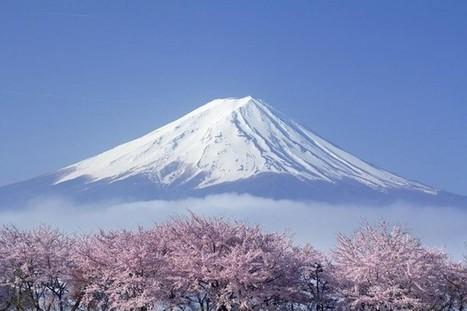 Hướng dẫn các đầu mối lấy hàng Nhật Bản   BizWeb VietNam   Scoop.it