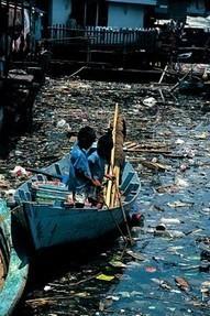 Les causes de la pollution de l'eau et ses impacts sur la santé - Économie Solidaire | svt votre sujet 2014 | Scoop.it