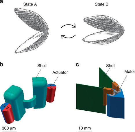 "When will missleading headlines end: ""Objet 3D Printed ""Microswimmer"" Opens Door to Self-Propelled Biomedical Industry"" 