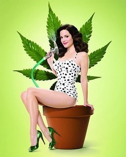 Feds Destroy $1 Billion in Pot to Celebrate Final Season of Weeds! - Hit & Run : Reason.com | News & Politics | Scoop.it