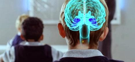 La neurociencia demuestra que el elemento esencial en el aprendizaje es la emoción | Pedalogica: educación y TIC | Scoop.it