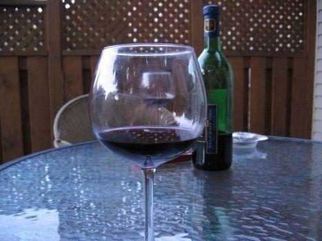 Alcool : à faibles doses, il multiplie par 2 la durée de vie d'un ver - Actualité Sciences sur Free.fr | Vin, blogs, réseaux sociaux, partage, communauté Vinocamp France | Scoop.it