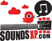 Injured Birds Silver Birches Album Review - SoundsXP | American Crossroads | Scoop.it