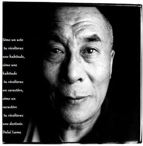 Les 18 règles de «gestion» du Dalai-Lama :-) | Homo Agilis (Collective Intelligence, Agility and Sustainability : The Future is already here) | Scoop.it