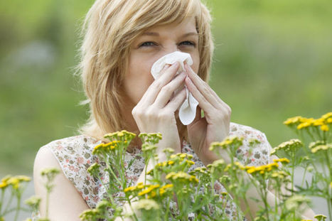 Six Surprising Ways to Beat Allergy Season this Year - Explorer News | Salt Therapy | Scoop.it