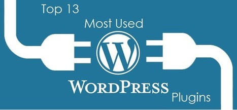 Top 13 Most Used Wordpress Plugins | Blogging Crazed | Scoop.it