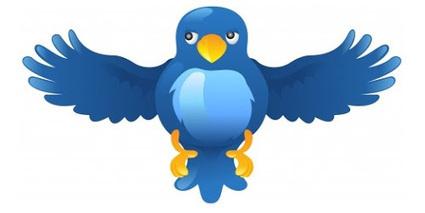 Twitter: 15 outils pour améliorer son utilisation et ses fonctionnalités | veiller | Scoop.it