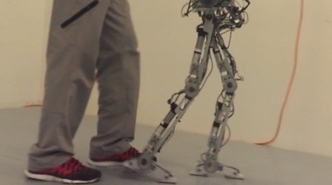 AMBER robot walks on human-like feet but isn't quite ready for British Knights - Engadget | humanlike robots | Scoop.it
