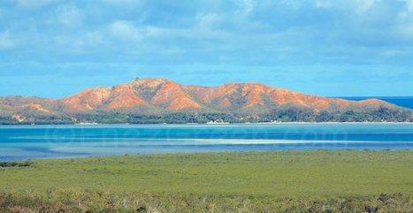 Nouvelle-Calédonie : revégétalisation des sols miniers en cours   EnezGreen   Tourisme insulaire durable   Scoop.it