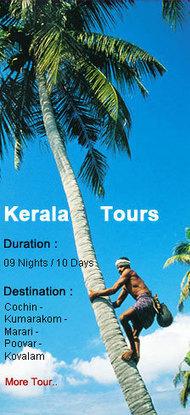 Assam Holiday Packages,Assam Tour,Assam Tours,Travel Agents for Assam,Assam Wildlife Tour,Assam Tour Packages | Taj Mahal Tour | Scoop.it
