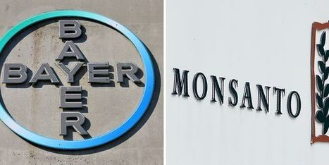 Bayer rachète le géant des semences OGM Monsanto pour 59milliards d'euros   Biotech, Pharmas and ideas   Scoop.it