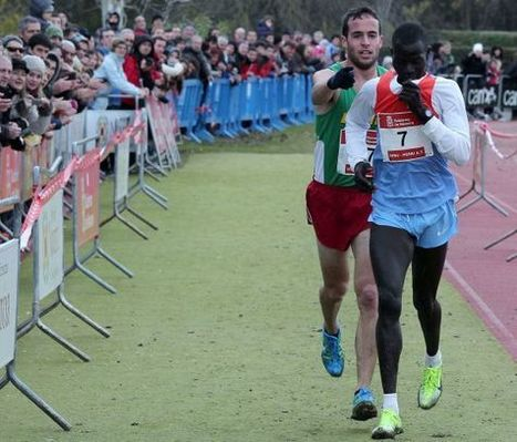 Honesty of the long-distance runner | Hrdinstvo | Scoop.it
