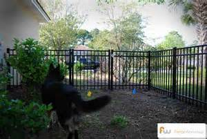 New Innovative Dog Fence System in the Market | Dog Fence | Scoop.it