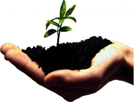 C'est quoi le «lead nurturing» ? par Astier Verschuere d'easiware | UX - Expérience client & utilisateur | Scoop.it