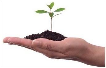 ¿Una buena estrategia de enlaces en contenidos gratis? | Posicionamiento  seo | Scoop.it