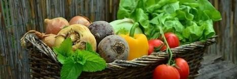 Les Français ont engagé un grand changement d'alimentation   Les nouvelles cultures de l'alimentaire   Scoop.it