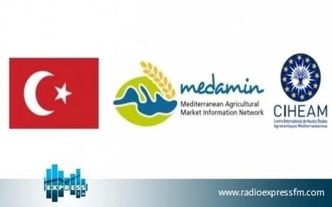 2e réunion à Izmir du réseau méditerranéen d'information sur les marchés céréaliers   IRIS Geopolitics of Grain   Scoop.it