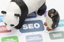 What is SEO? Learn What SEO is & Why it's Important | Search Engine Academy | SEO,Social Media, and Marketing | Scoop.it