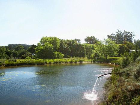 Evacuation des eaux usées dans un lac | SVT Pollution de rivière et danger pour la santé | Scoop.it