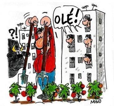 Espagne.  Avec la crise, les potagers urbains fleurissent | Attitude BIO | Scoop.it