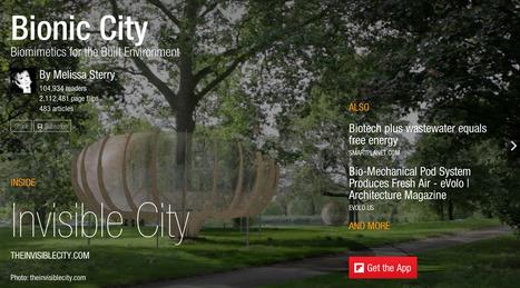 Bionic City magazine, February 2014 | Remembering tomorrow | Scoop.it