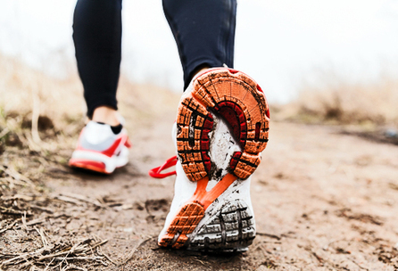 Futurity.org – Exercise makes brain more resilient to stress | Weight Loss and Fitness | Scoop.it